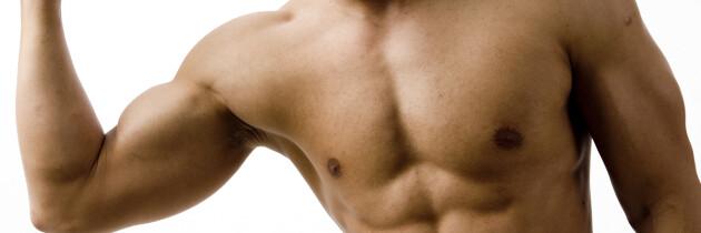 Membangun Massa Otot